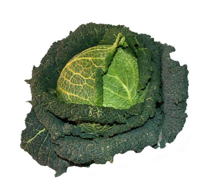 Overview Savoy Cabbage