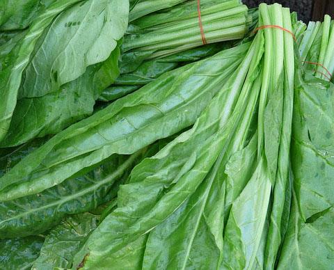 tipos de vegetales de hojas verdes